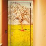 fotovitrazhi-na-dveri-1