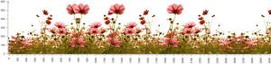 Раздел цветы