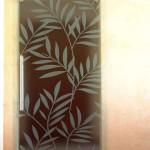 steklyannye-dveri 5